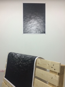 Untitled, 2015 Digital prints, pine, dimensions variable